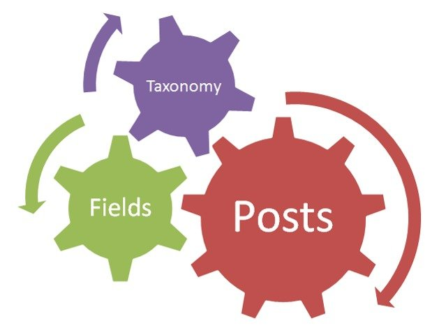 WordPress Custom Field Plugin, Merubah WordPress Jadi Website Sesuai Kebutuhan