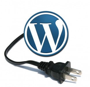 10 Plugin Wajib Untuk Optimasi Blogging di WordPress
