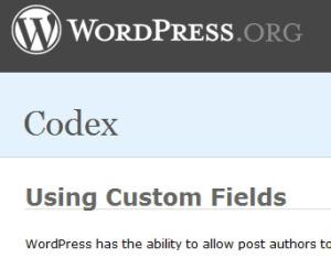 ACF: Lebih Mudah Dan Rapi Tangani Custom Field WordPress