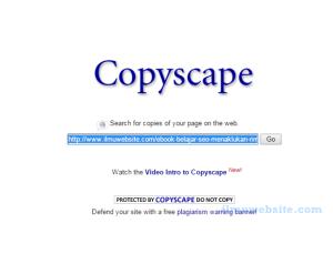 CopyScape : Cara Mengatasi Pembajak Artikel Blog Anda