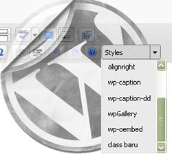 Menambahkan Custom CSS Style Pada Editor WordPress
