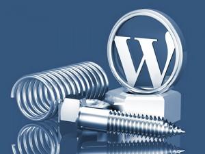 Konfigurasi Awal Pada WordPress Yang Harus Dilakukan